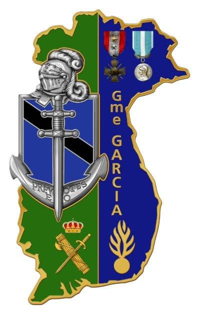 A custom military insigna with many details