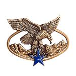 Insigne en bronze estampé relief modelé