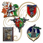 Insignias_and_Pins_Additional_Pieces